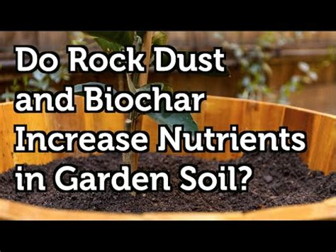 What Is Rock Dust For Gardens Do Rock Dust And Biochar Increase Nutrients Including Trace Elements In Garden Soil