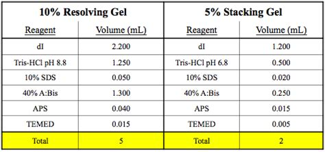 Mba Crosslinker Percentages In Acrylamide Gel by Does Bsa Usually Appear As 2 Bands On Sds Page Gel