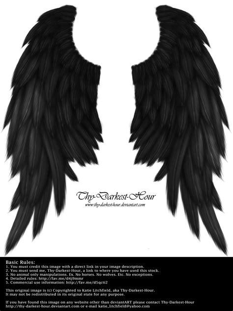 wing black daydream wings black by thy darkest hour wings