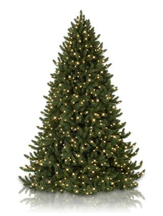 vermont white spruce artificial christmas tree balsam