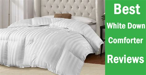 what is the best down comforter choosing a white down comforter ultimate guide reviews