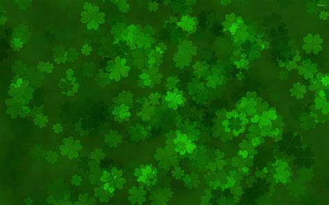 shamrock green irish shamrock wallpapers wallpaper cave