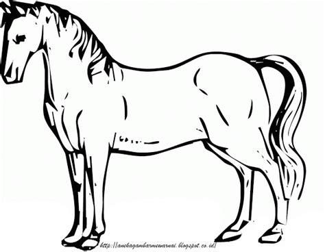 gambar mewarnai kuda untuk anak paud dan tk aneka gambar mewarnai