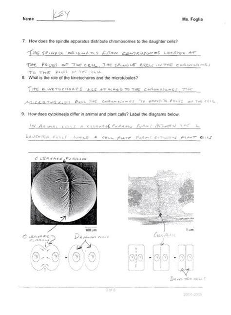 free printable division worksheets softschools soft schools division worksheets divisibility rules
