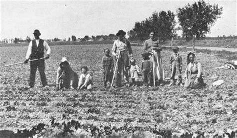 the sugar beet generation – the history bandits