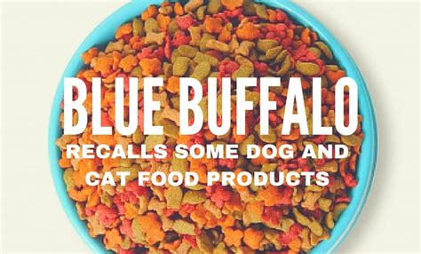 blue food recall blue buffalo recalls pet food products wolf and pravato