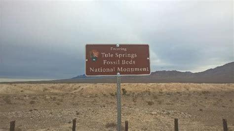 tule springs fossil beds national monument looking west foto de tule springs fossil beds national