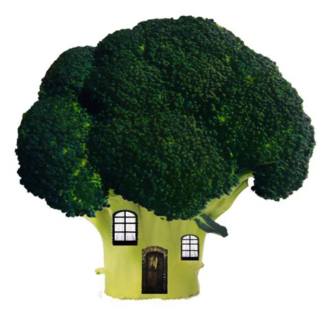 buy house brockley broccoli house by moonglowlilly on deviantart