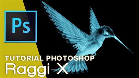 tutorial x ray photoshop cs3 tutorial photoshop come creare l effetto raggi x x ray