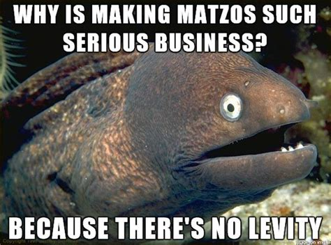 passover 2015 all the memes you need to see heavy com