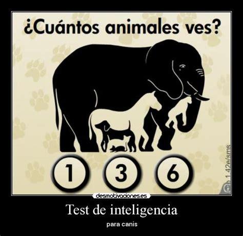 ilusiones opticas test inteligencia test de inteligencia desmotivaciones