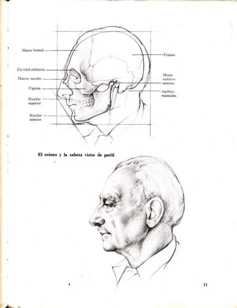 libro dibujo figura humana pdf gratis dibujo anat 227 179 mico de la figura humana hun 1