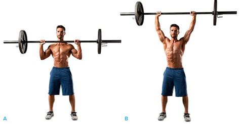 overhead bench press how to overhead press a beginner s guide