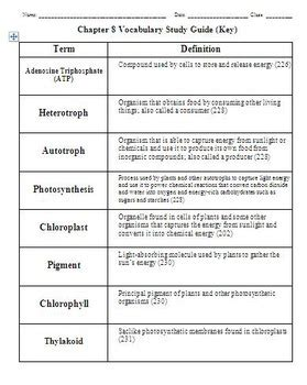 chapter 8 photosynthesis section review 8 3 biology chapter 8 photosynthesis vocab study guide by