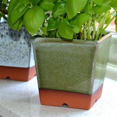 Windowsill Pots by Windowsill Herb Pot Apple Green Weston Mill Pottery Uk