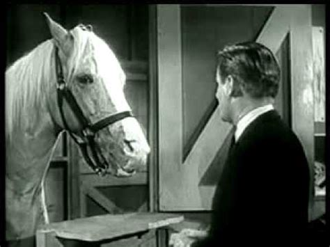 Mister Ed Het Sprekende Paard by Mr Ed The Talking Service Announcement