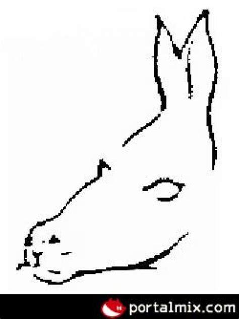 imágenes con doble sentido de animales ranking de imagenes con doble sentido listas en 20minutos es