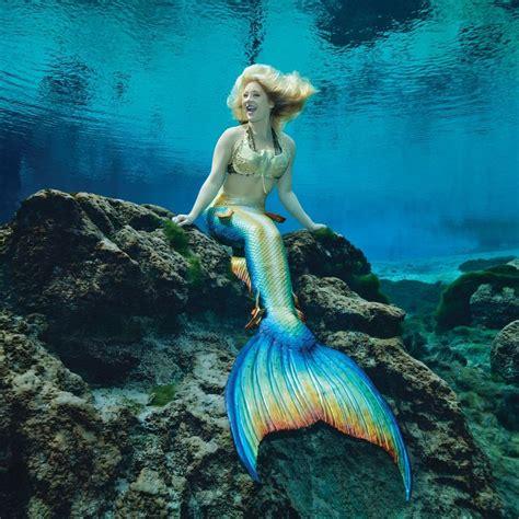 Mermaid Image 611 best images about mermaids of weeki wachee on