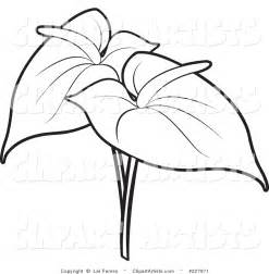 Flowers Drawings Outlines by Flower Outline Clipart Clipart Panda Free Clipart Images