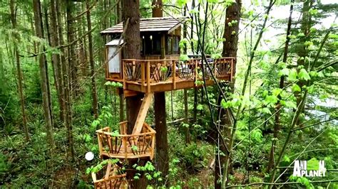tree house music behind the build texas sized treehouse mp3 4 69 mb search music