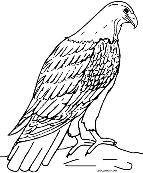 Printable Eagle Coloring Pages For Kids Cool2bkids Eagle Coloring Page