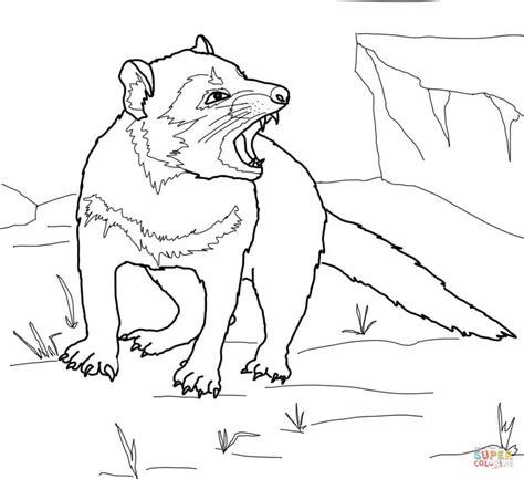 tasmanian devil growling coloring online super coloring