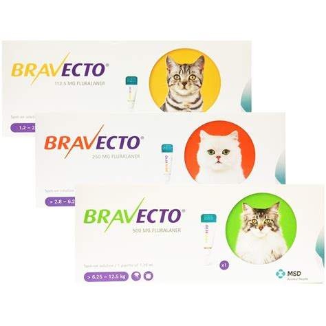 intervet bravecto spot on for cats intervet from vet - Bravecto Flea Medicine For Cats