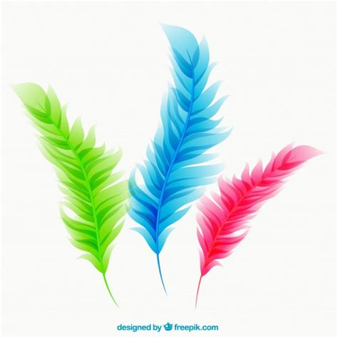 colorful feathers vector free