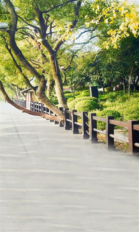 Background Wedding Outdoor outdoor background pictures 5x7ft grand outdoor park