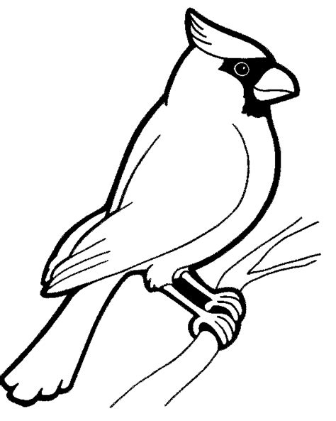 Cardinal Bird Coloring Page s home march birds