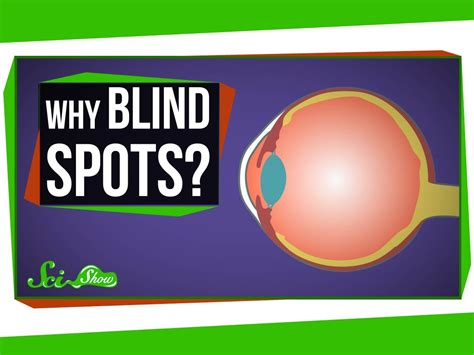 Why Do I A Blind Spot In My Vision why do we blind spots