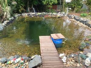 diy pool fountain ideas pool design ideas the environmentally friendly swimming ponds sweeping the