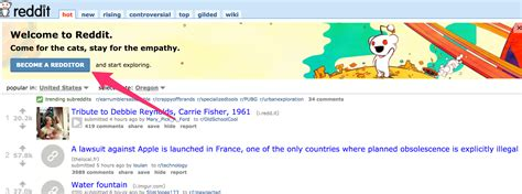 wtf reddit the front page of the internet wtf reddit the front page of the internet wtf reddit the