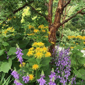 Bellevue Botanical Garden Hours Bellevue Botanical Garden 510 Photos 163 Reviews Botanical Gardens 12001 St