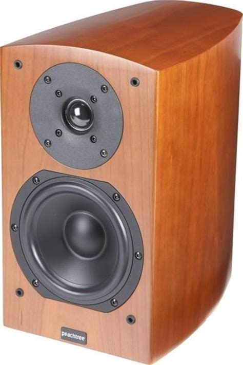 regal lautsprecher peachtree audio d5 regal lautsprecher stereo surround