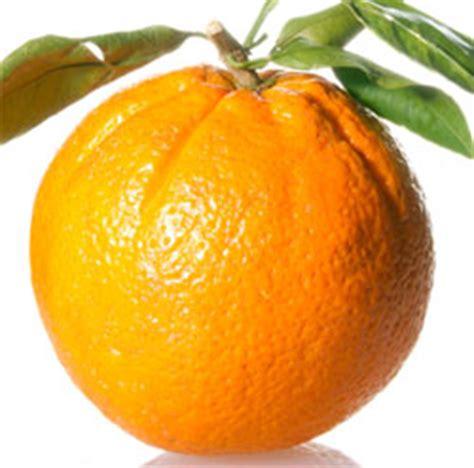 fruit allergies fruit allergies types of fruit allergies treatment options