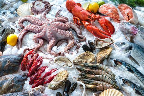 fruit de mer les fruits de mer boosteraient notre m 233 moire top sant 233