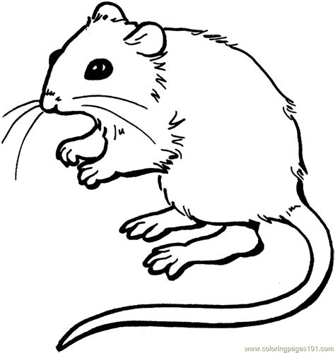 Mouse Coloring Pages Printable Coloring Pages Mouse Animals Gt Mouse Free Printable by Mouse Coloring Pages Printable