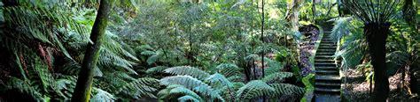 file rainforest walk national botanical gardens jpg wikipedia