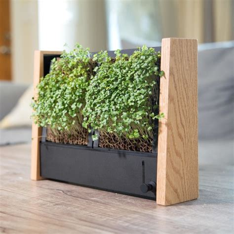 grow micro veggies indoors with this cool vertical garden