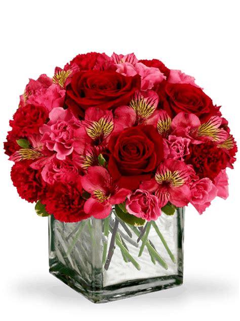 fiori fuxia composizione floreale di fiori in vaso cubico con