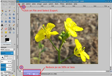 compress pdf less than 20 mb jpeg how to reduce size of an image from 31 1 kb to