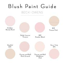 the color blush 25 best ideas about pink paint colors on pink