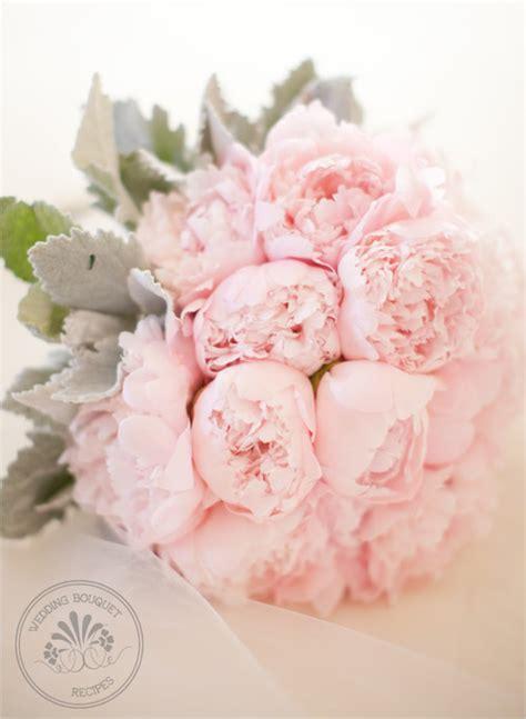 pink peonies wedding merry brides peonies dusty miller bouquet