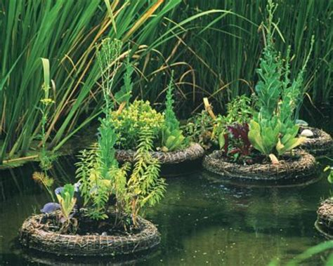 floating vegetable garden pond rafts with mini gardens on board made of bound reeds