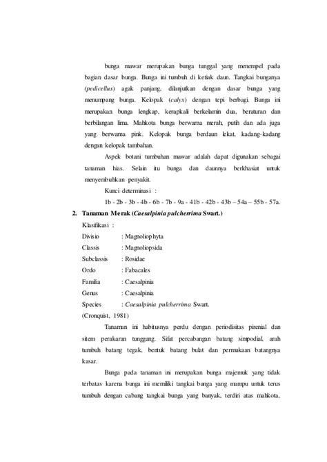 Lu Bunga Mawar N Kuncup Pink 7 Tangkai laporan praktikum botani tumbuhan tinggi 5 sub classis rosiidae