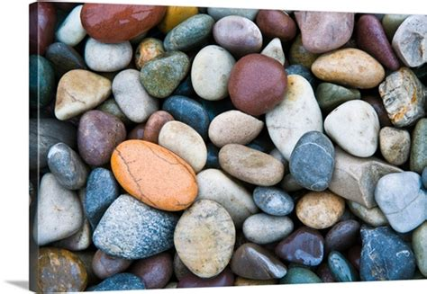colored stones up of multi colored stones wall canvas prints