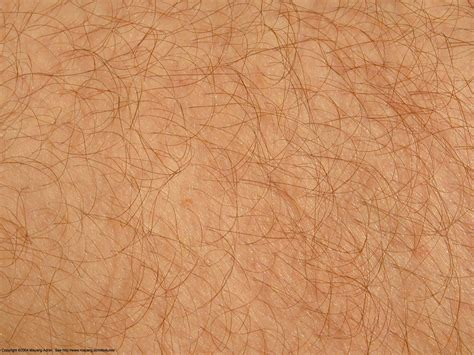 pin texture skins backgrounds on skin texture search 19 skin textures texture human and hair