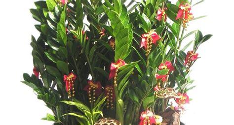 fiori dwg vaso fiori dwg giardino interno dwg pianta piano terra
