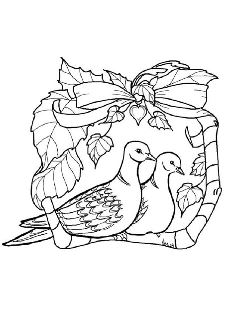 dove color dove coloring pages and print dove coloring pages
